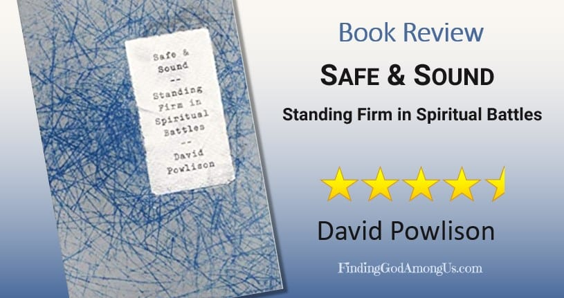 Safe and Sound Book Review