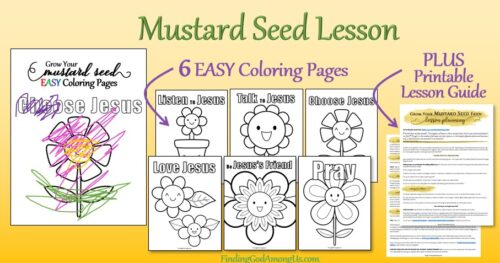 The Parable of the Mustard Seed EASY Coloring Pages plus the Mustard Seed Reflection Lesson Guide makes a perfect Sunday School Lesson for preschool or kindergarten.