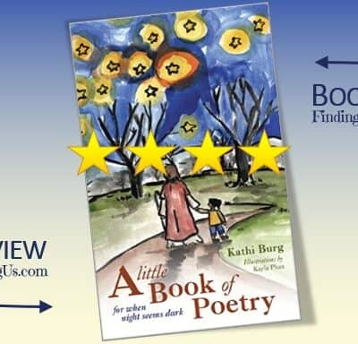 Little Book of Poetry Book Review