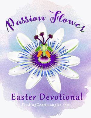 Passion Flower on Easter Devotional - cover