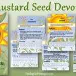 6-Day Mustard Seed of Faith Devotional walks through all the steps needed to grow your faith. Are you looking for Mustard Seed Faith? Here it is.